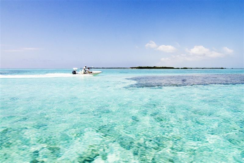 Imagini pentru caraibe
