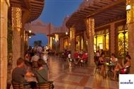 <span>SEA LIFE</span> - Sharm El Sheikh